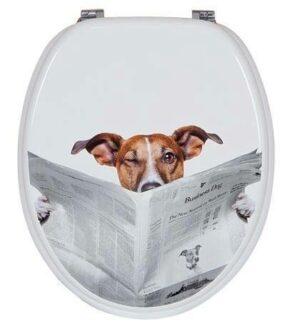 מושב אסלה עץ כלב עם עיתון